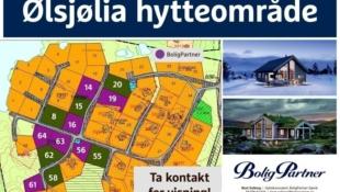 Ølsjølia - Lenningen. Store og solrike tomter. Utsikt mot Jotunheimen og helårsvei. Flotte ski- og fotturområder i Synnfjellet.