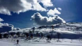 Unike hyttetomter på Savalen, nærhet til hotellet, ski og sykkelløyper.