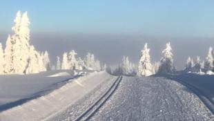Solrike, store og prisgunstige selveiertomter! Flott utsikt, kort vei til Lillehammer og Sjusjøen. Skiløyper gjennom feltet!