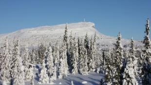 Blekastad hyttefelt på Skei! Store selveiertomter (fra 1020 - 2480m2) med god solgang og flott utsikt!