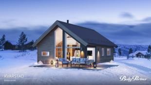 GOLSFJELLET/BJØDNALIE - Moderne hytte med gode løsninger og hems fint bel. med vid utsikt og gode solforhold. Ca 20 min. fra Gol sentrum/tog