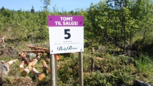 16 eneboligtomter i landlige omgivelser på Skogen sør. Gode solforhold, rolig og barnevennlig. 12 SOLGT!